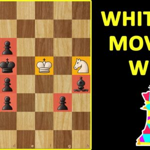 MATE in 12 | Chess Challenge | Solve This If YOU Are a GENIUS | Endgame Puzzle, Moves & Tactics