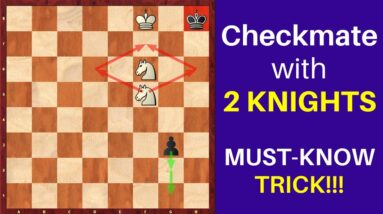 Checkmate with 2 Knights? + Giveaway!