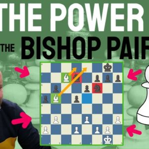 Power of the bishop pair and a lesson on vulnerability of the knights