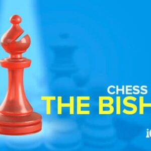 the chess bishop clerical chaos on the chessboard