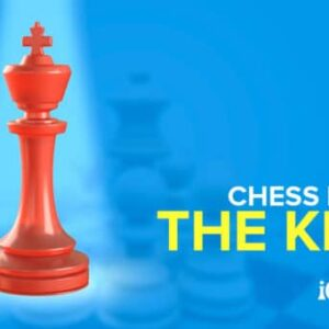 the chess king royalty rules the chessboard