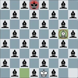 Can You Solve This Chess Optical Illusion?