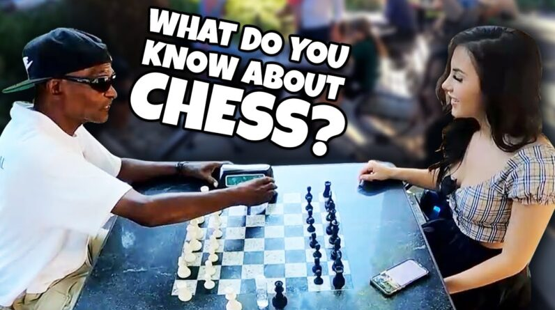 I Pretend To Be A Chess Beginner