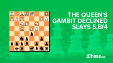 the no sweat approach to defeating the queens gambit declined 5 bf4