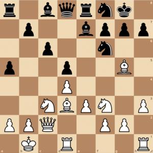 opposite side castling in the queens gambit exchange variation wim camelia ciobanu ichess club